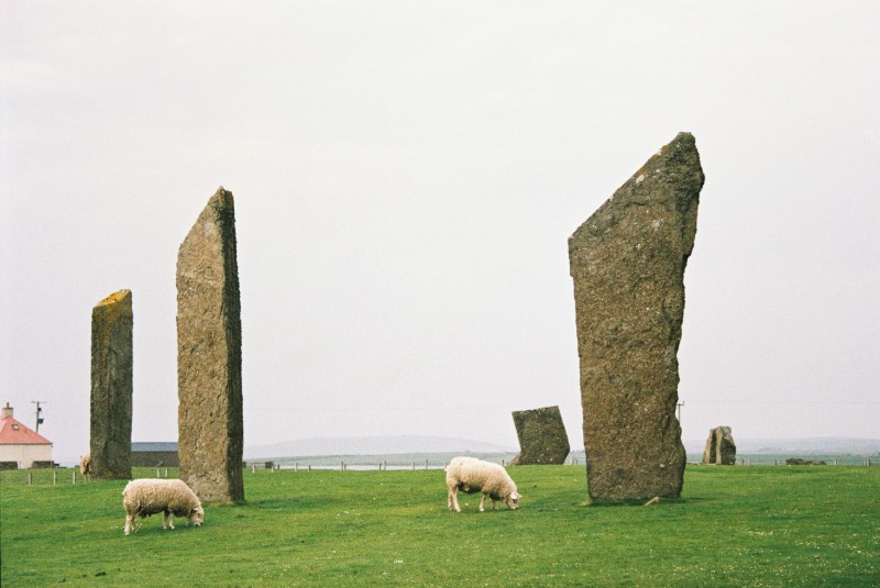 orkney island tours